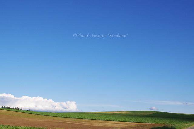 晴ときどき曇3