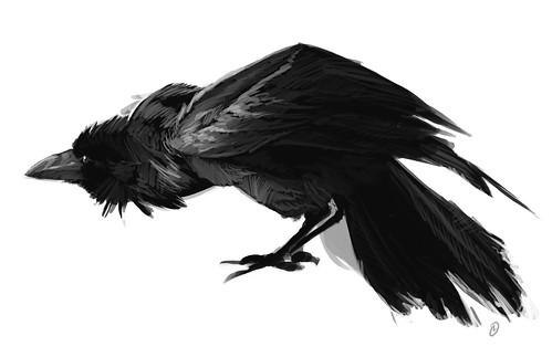 Paradoxes: raven