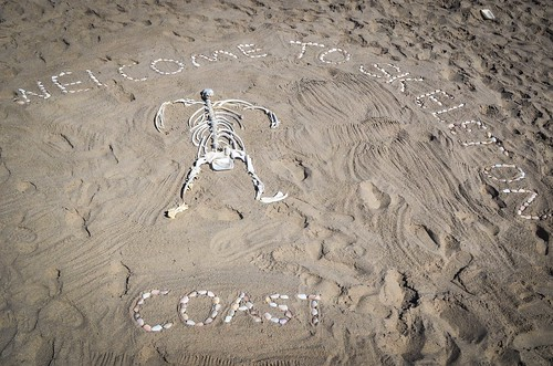 Welcome to Skeleton Coast