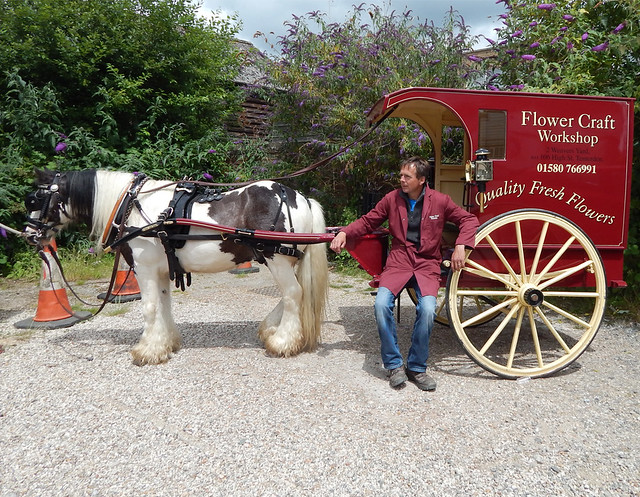 Horse and Carriage  Stock