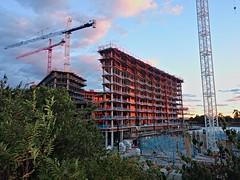 Cranes at the Wharf, 22 Oct 2016