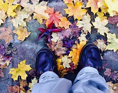Two Feet in Autumn #1