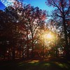 Leaving #parting #sweetsorrow #autumn #leaves #foliage #trees #druidhillpark #reservoirhill #baltimore