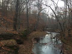 Prince William Forest Park, Triangle, Virginia