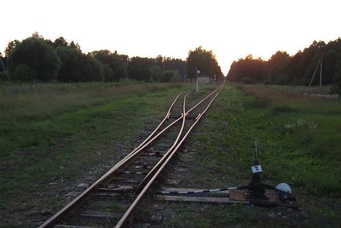lithuania panevėžysdistrictmunicipality miežiškiaieldership panevėžiorajonosavivaldybė miežiškiųseniūnija panoramio