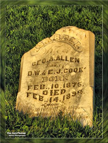 August 2010 - Isabell Allen 1875-1894 - Hyattville Cemetery