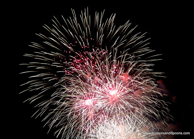 4th of July Fireworks in Washington, DC