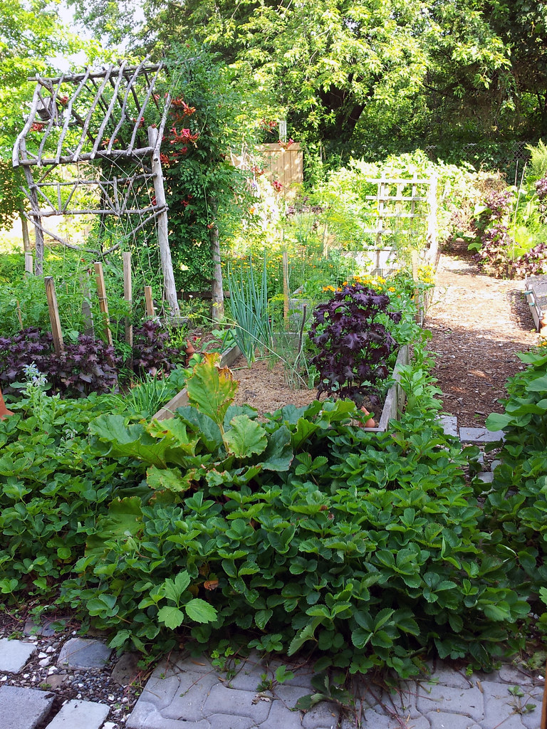 Let 39 s make a potager garden 10 edible landscaping for Edible garden design ideas