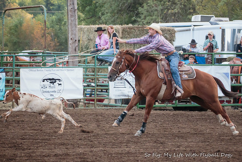 Benton County Fair and Rodeo 2013-6863