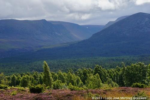 geotagged scotland europa europe escocia aviemore cairngorms rothiemurchus luciojosémartínezgonzález luciojosemartinezgonzalez luciokeywordsjos geo:lat=571581783333333 geo:lon=379568333333333