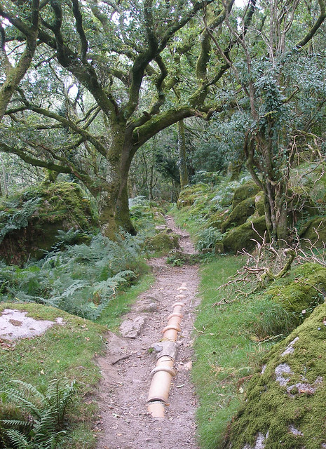 Ceramic pipeline, Plym Valley, Dartmoor