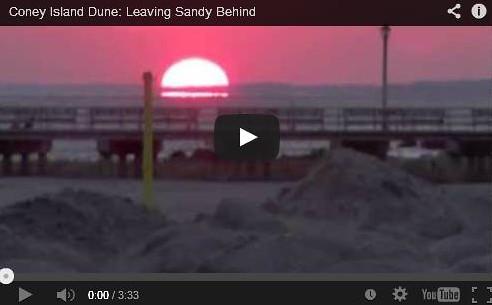 Coney Island Dune