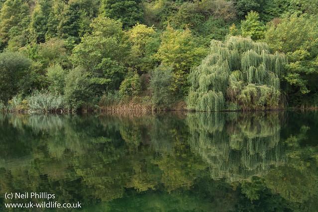 Chafford gorge landscapes-3