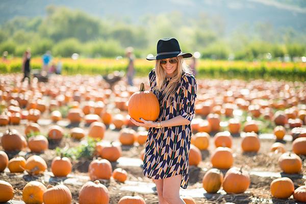 eatsleepwear, outfit, pumpkins