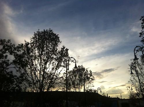 day uploaded:by=flickrmobile flickriosapp:filter=nofilter pwpartlycloudy jardínprincipaldeguadalupe