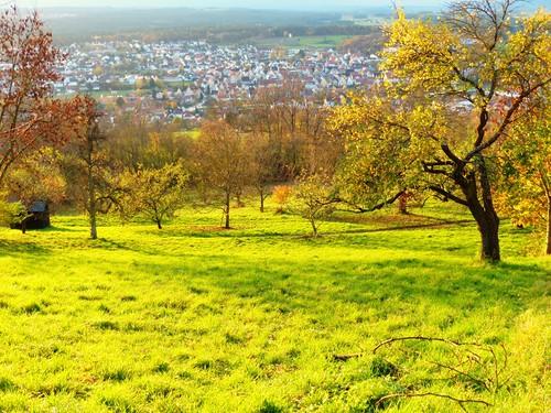 autumn green nature germany bayern deutschland bavaria view rothenburg naturellement schnaittach mittelfranken talblick