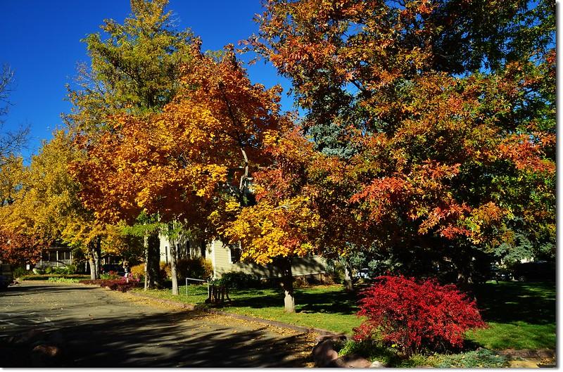 Chautauqua Park in Fall 5