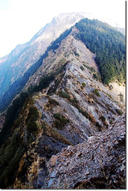 干卓萬斷崖(東南向西北望) 1