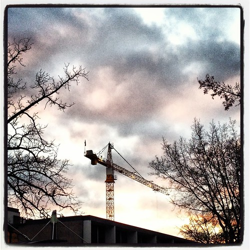 crane by Nature Morte