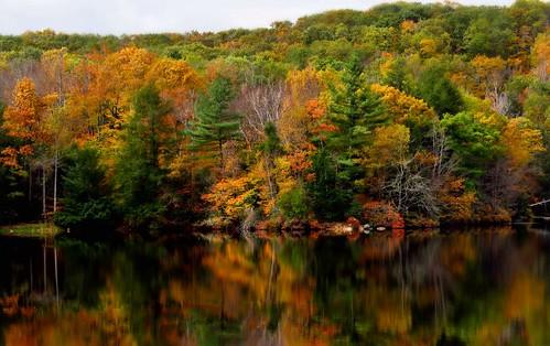 autumn fall massachusetts gardner johnnyappleseedtrail dunnspond