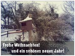 Frohe Weihnachten und Vogelhaus