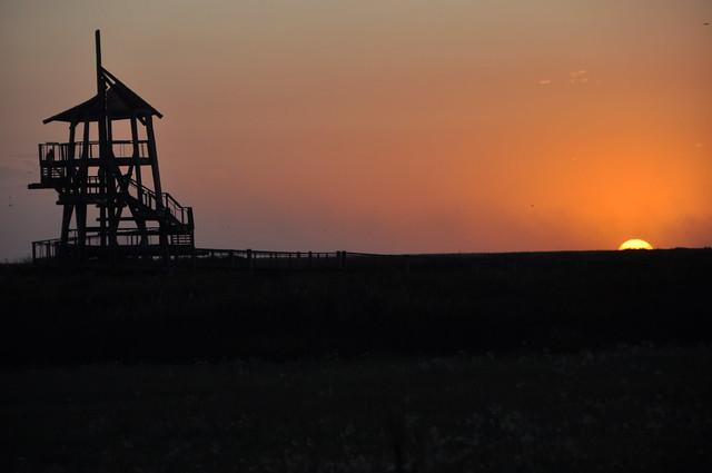 Layton Bird Sanctuary 036