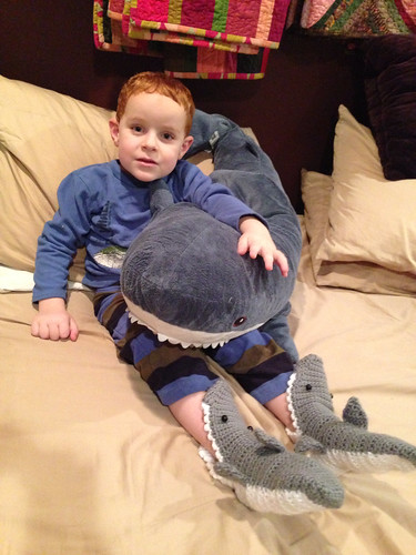 Why yes, he does like sharks. by aviva_hadas (Amy)