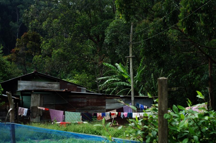 sri lankan village