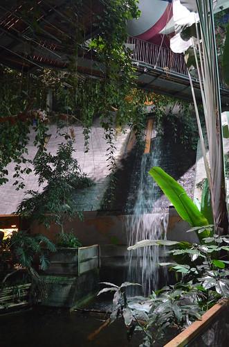 Biosphaere Potsdam waterfall