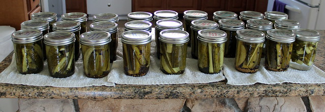 this summer's pickle project