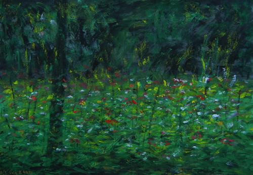 Wildflowers / 野花 / Wildblumen