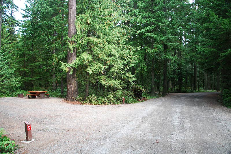 Campground at Englishman River Falls Provincial Park, Parksville, Vancouver Island, British Columbia, Canada