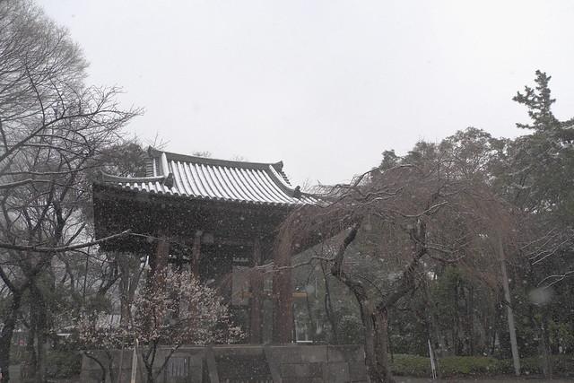 Belfry at Zojo-ji
