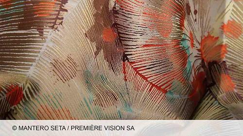 vegeteaucx249-MANTERO_SETA_B