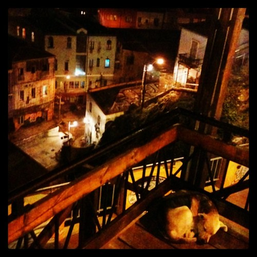 Soñar con Valparaíso #valparaíso #chile #city #night #dog #street #houses #lights #cool #nice #love