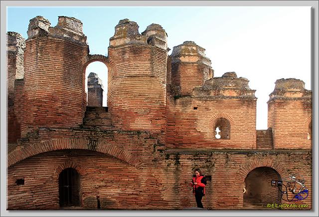 Castillo de Coca (Segovia) (3)