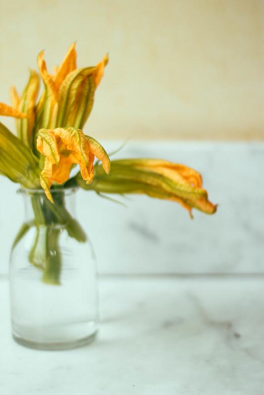 zucchine blossoms