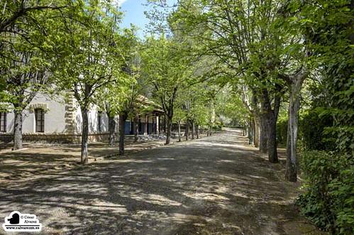 La calle de la escuela