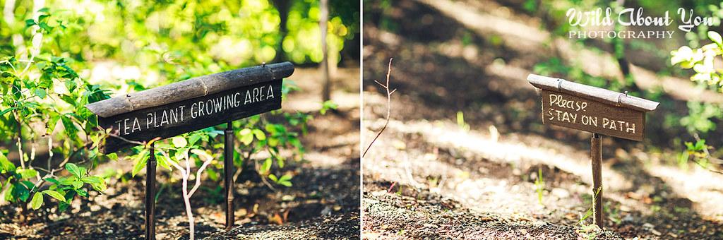 Hakone Garden signs