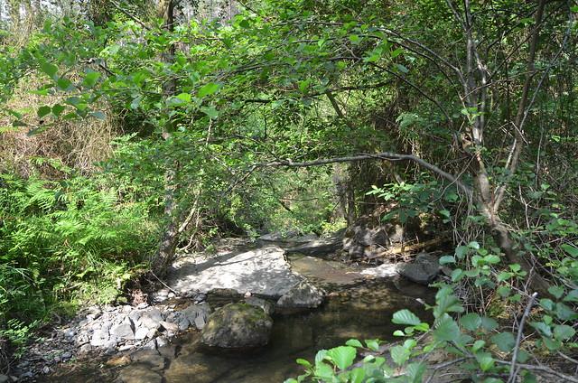 Castaños ibaiaren ur-jauzia. Cascada del río Castaños.