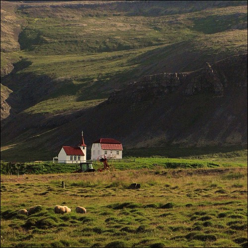 breiðafjörður isl iceland vestfirðir islanda fields campi pecore sheep chiesa church