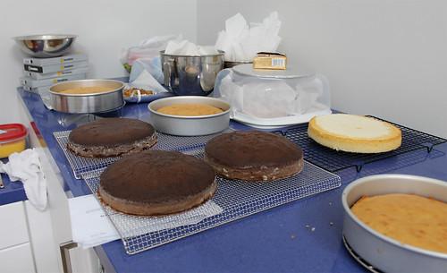 Cake Day 2013