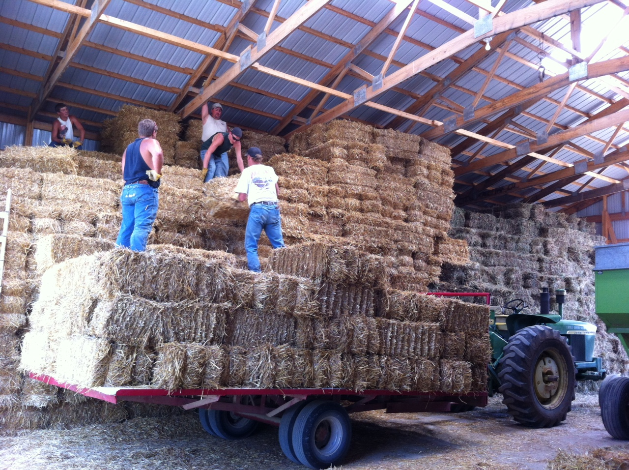 Kansas atchison county lancaster - Putting Up Straw