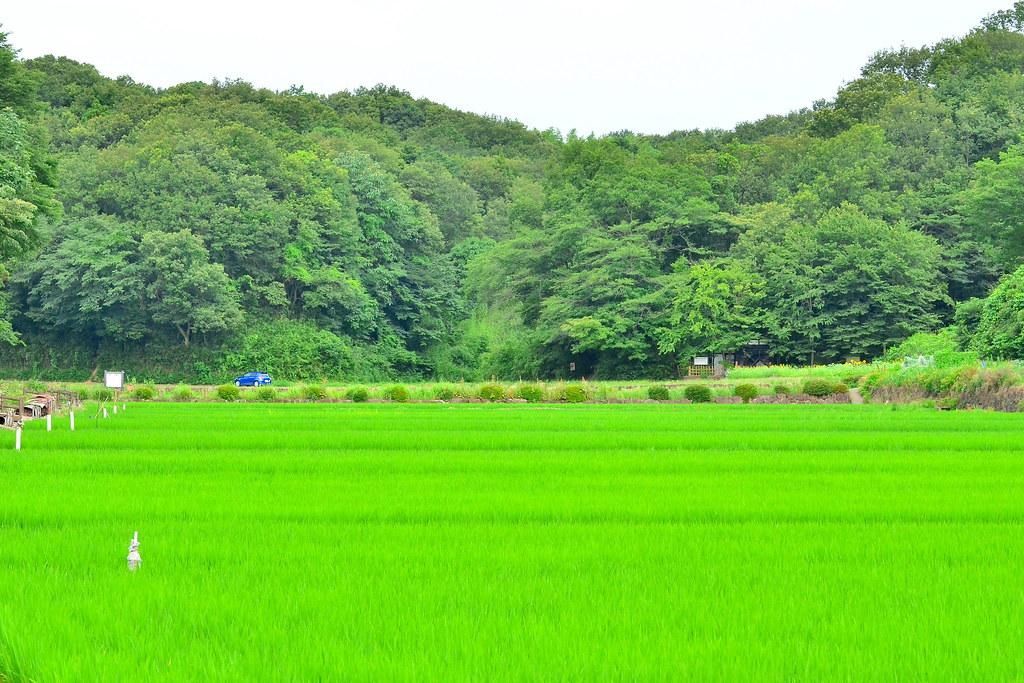 寺家ふるさと村 / Jige Furusato Village