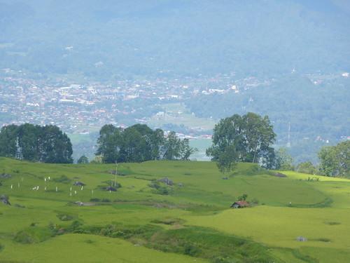 Sulawesi13-Lo'ko Mata-Ke'pa (16)