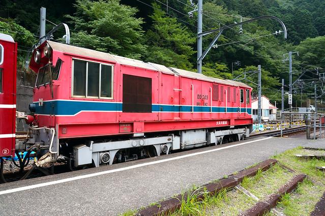 DSC01855