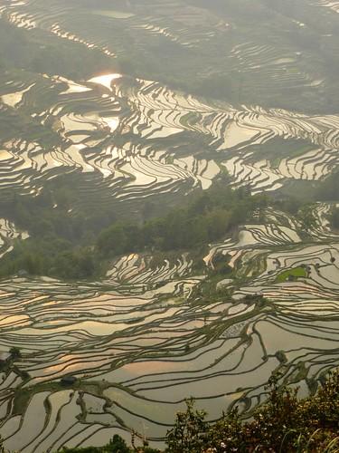 Yunnan13-Yuanyang 24-Bada (16)