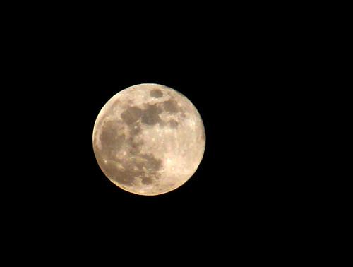 Hunter's Moon by saish746