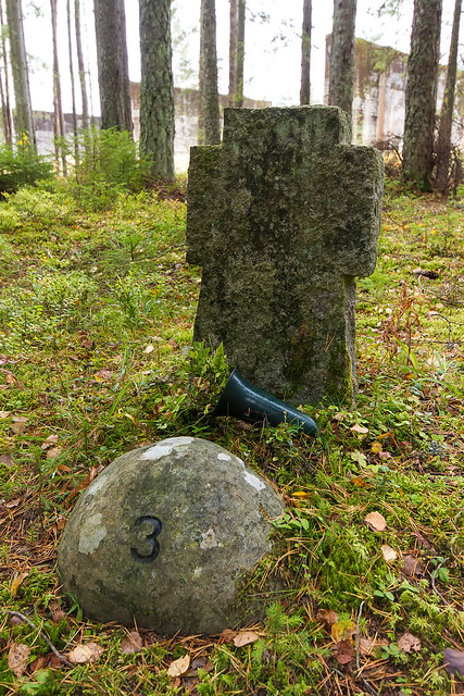 Trandumskogen-3591