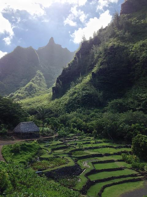 Limahuli Gardens And Preserve Kauai 39 S Best Kept Secret